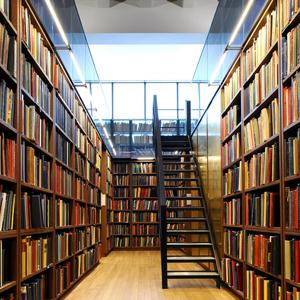 Библиотеки Углича
